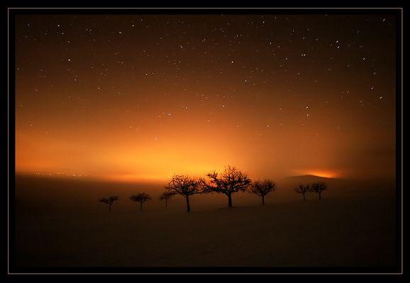glowing nights