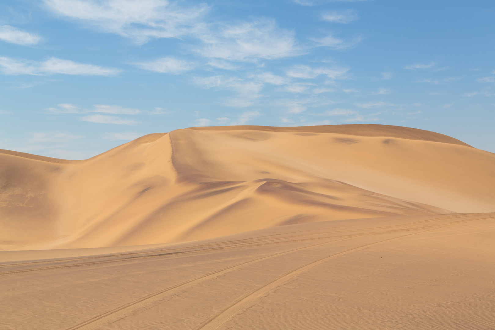 Glowing sand dunes in the Namib