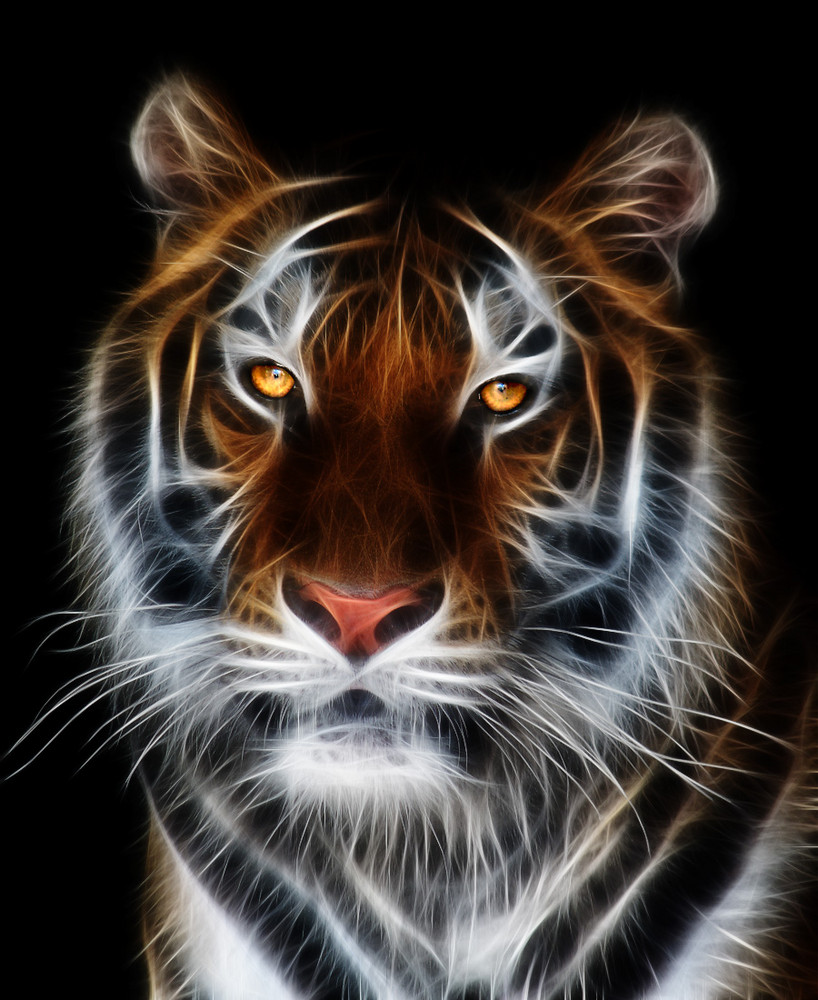 Glowing Tiger