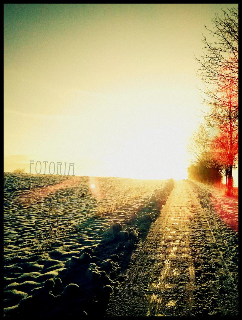 glowing winter