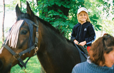 Glück auf einem Pferderücken