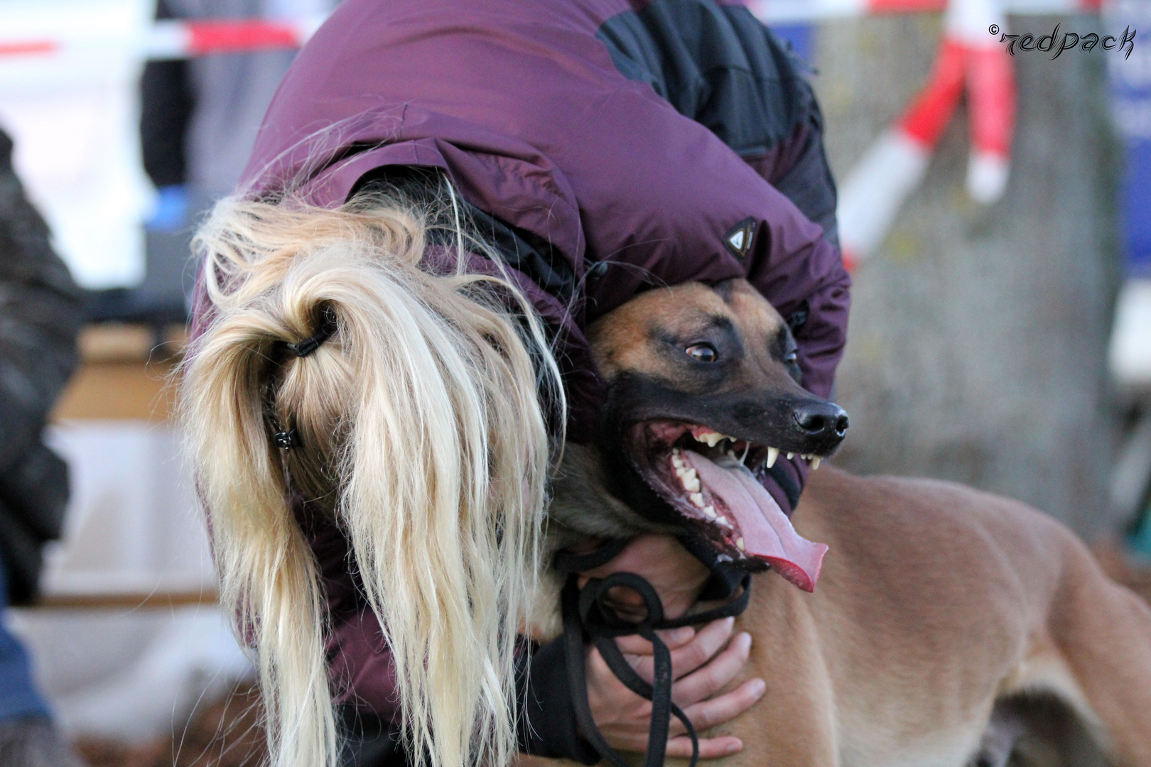 Glückliche Hundeführerin nach der Körung