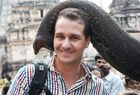 Glückselefant in Indien