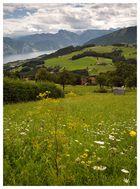 Gmundner Berg (3)