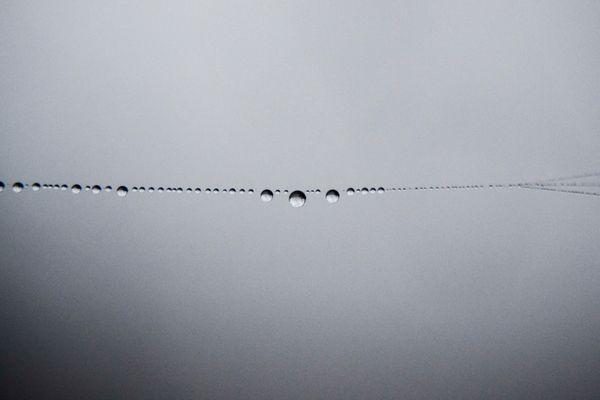 gocce di nebbia 2