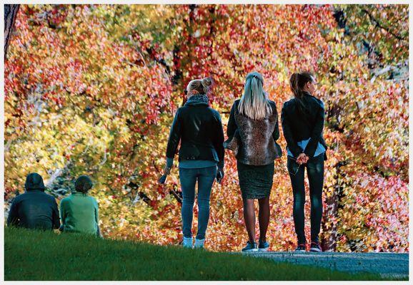 godersi l autunno.....