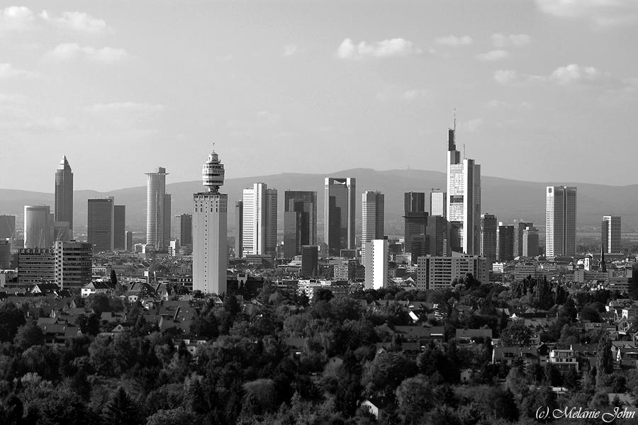 Goetheturm view