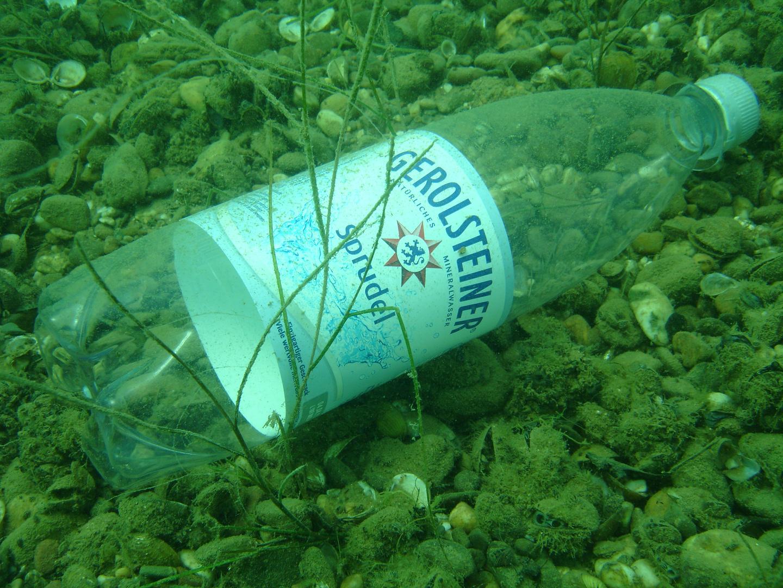 Goldberger See - Ich hab die Quelle gefunden... 07-2010