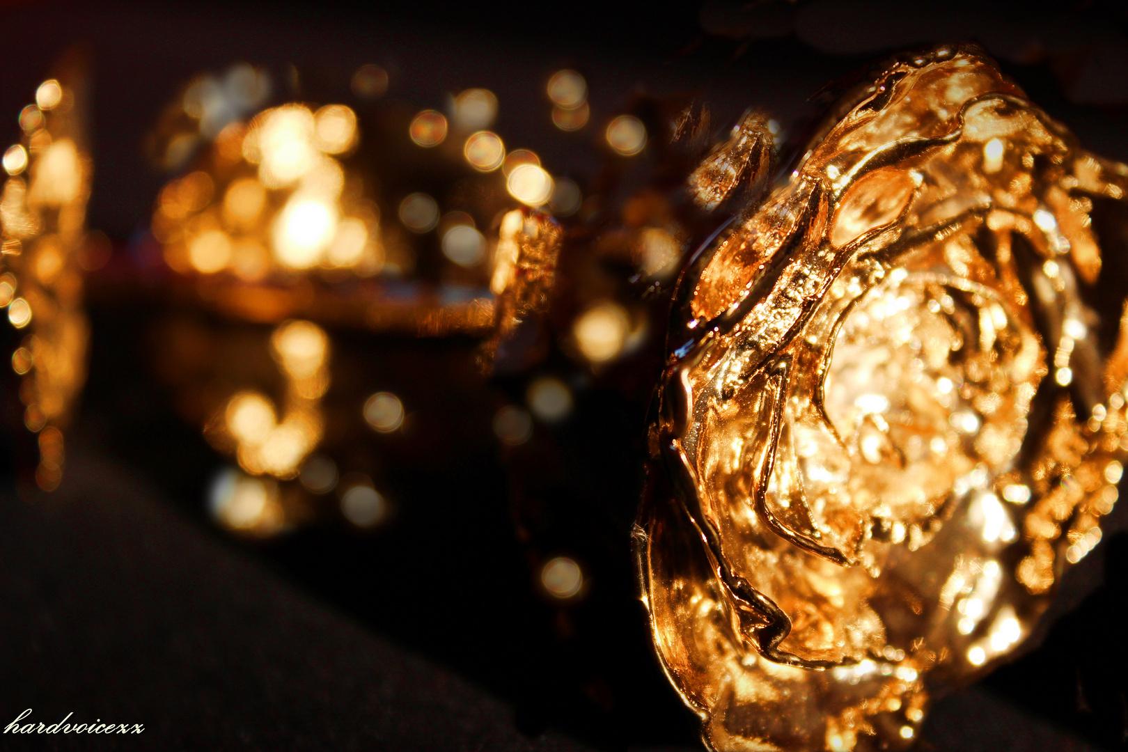 ~ golden ~