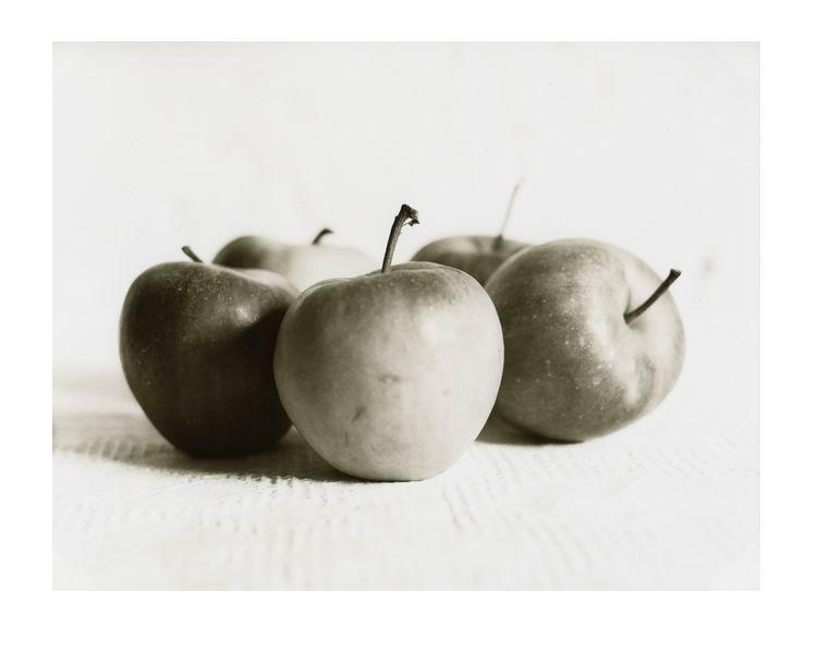 golden appels of the sun
