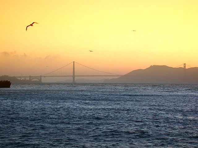 Golden Gate Bridge - wörtlich genommen
