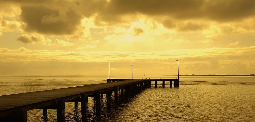 Golden Light II