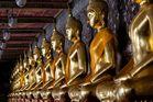 golden row I