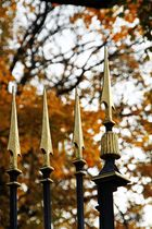 goldene Spitzen im goldenen Oktober