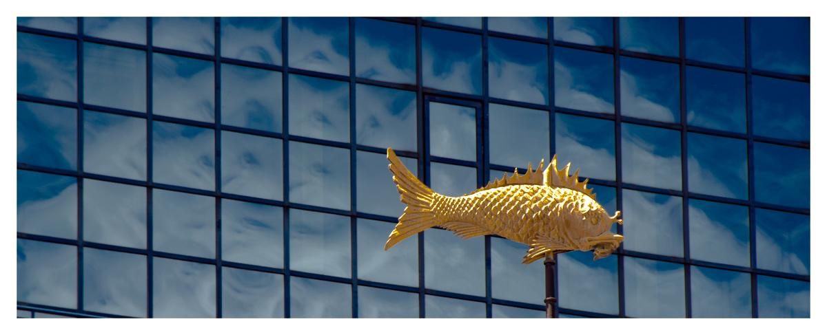 ~~Goldener Fisch im Wolken-Meer ~