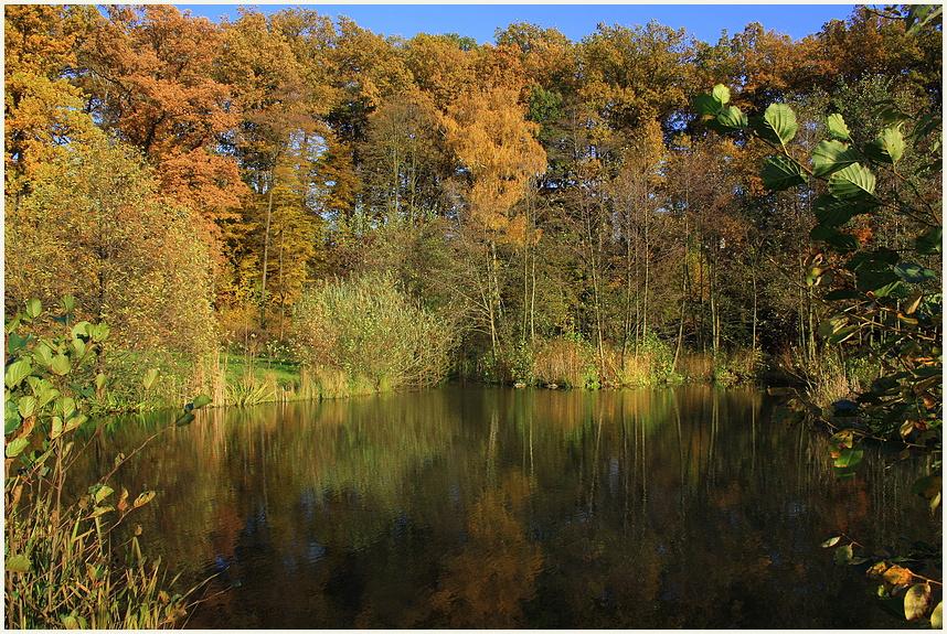 Goldener Herbst 2