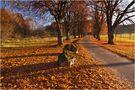 Goldener Herbst auf der schwäbischen Alb 1 von Thomas Leib