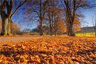Goldener Herbst auf der schwäbischen Alb 2 von Thomas Leib