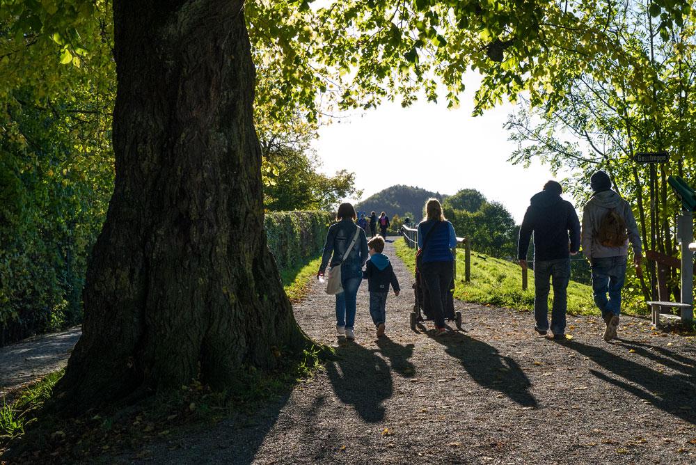 Goldener Herbst auf Dreiweihern über St. Gallen #4