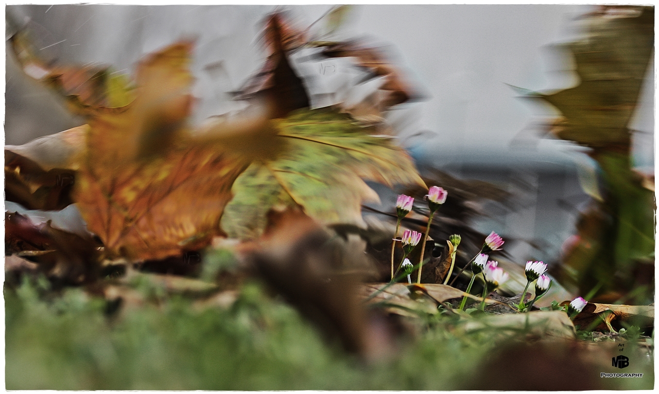 'Goldener Herbst'