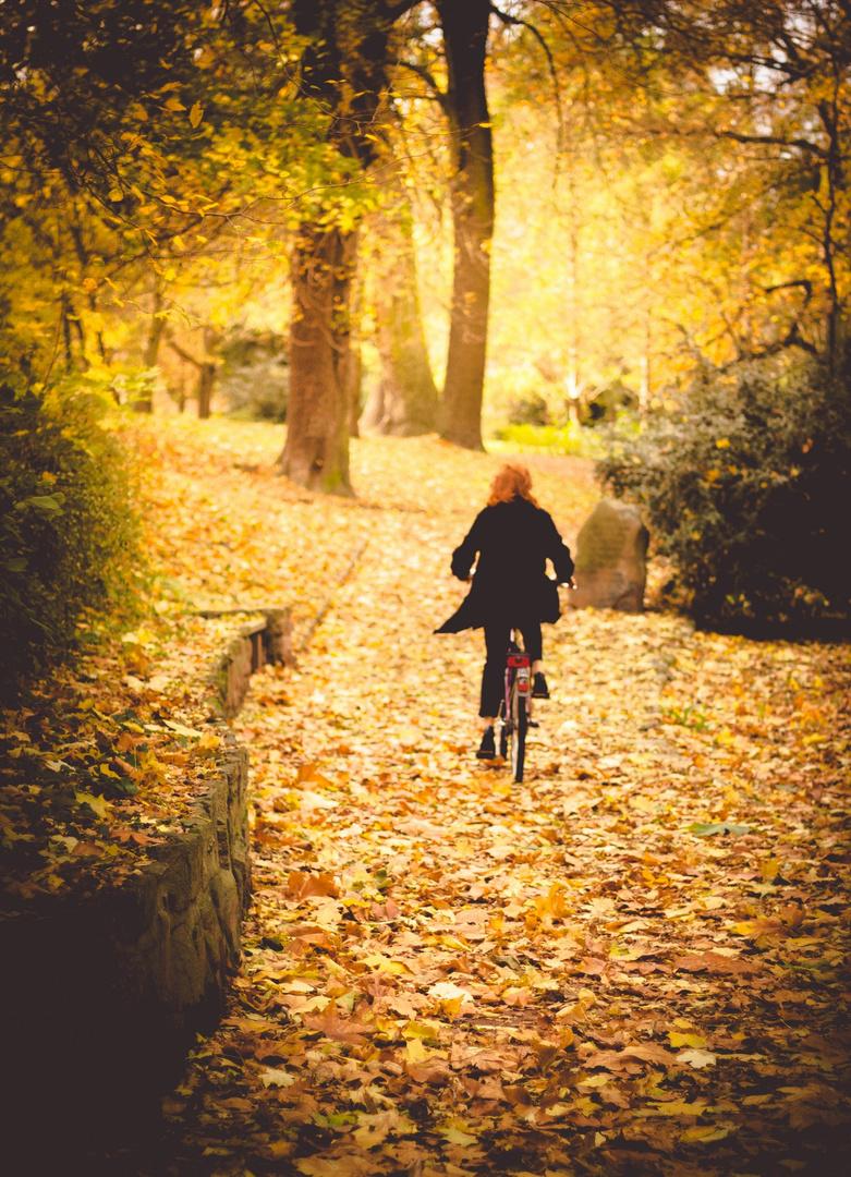 Goldener Herbst in Halle.