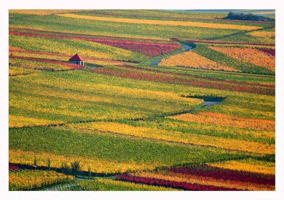 Goldener Herbst in Mainfranken