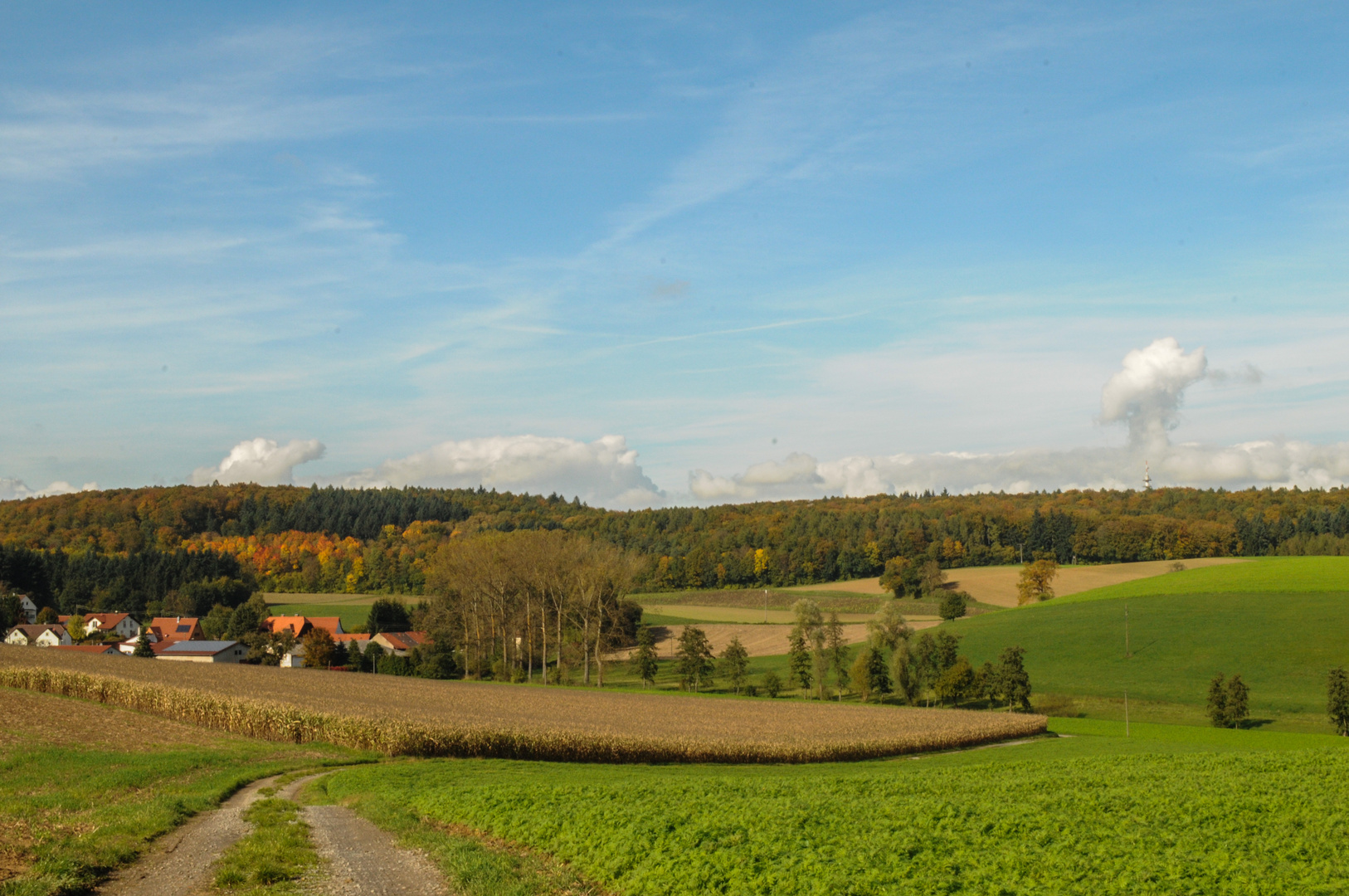 Goldener Herbst in Weiler 1