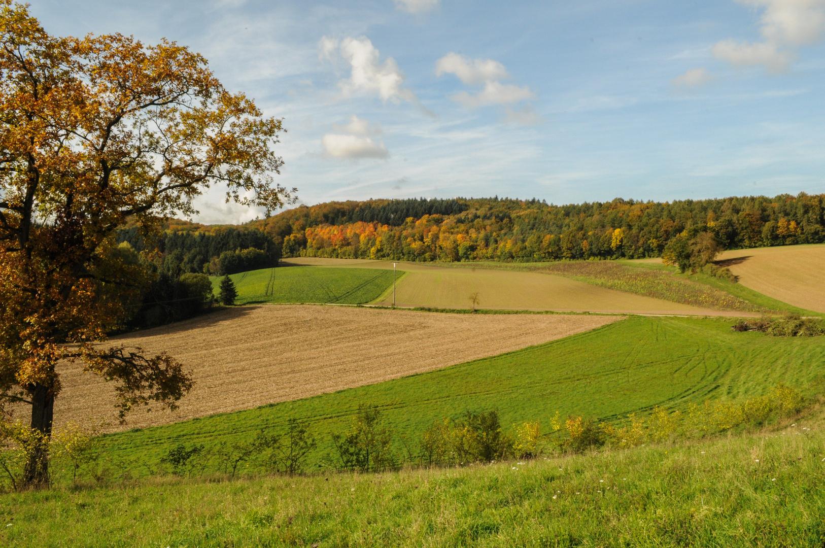 Goldener Herbst in Weiler 3