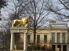 goldener Löwe