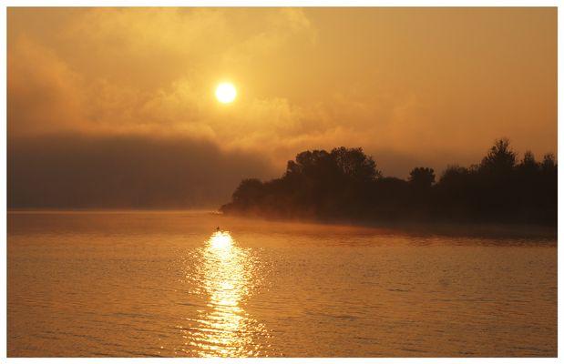 Goldener Morgen ...
