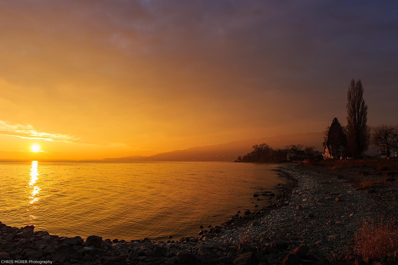 goldener Morgen in Horn
