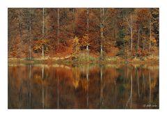 Goldener November - 5