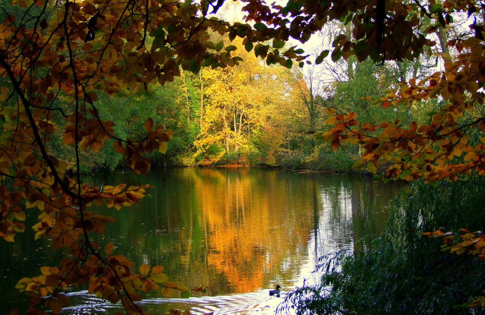 Goldener Oktober....