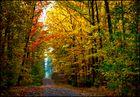 Goldener Oktober °1