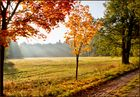 Goldener Oktober °2