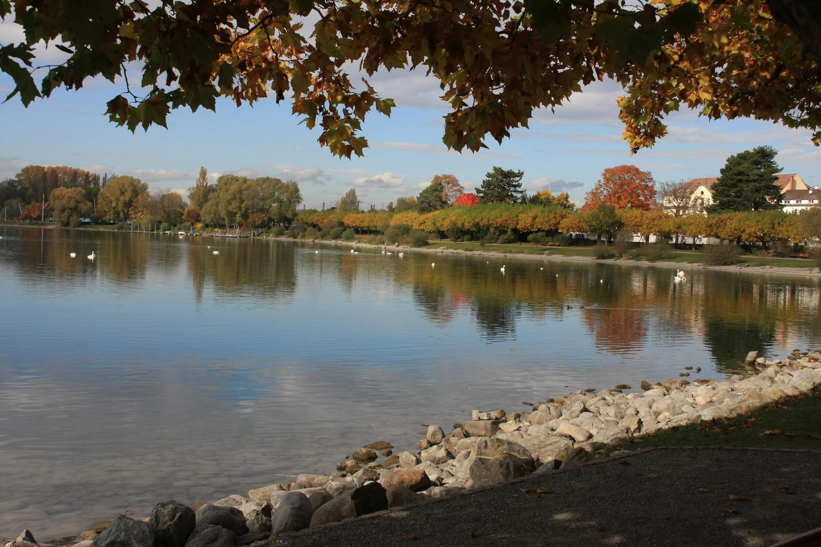Goldener Oktober am Bodensee