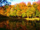 goldener Oktober .........................