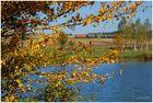 Goldener Oktober II
