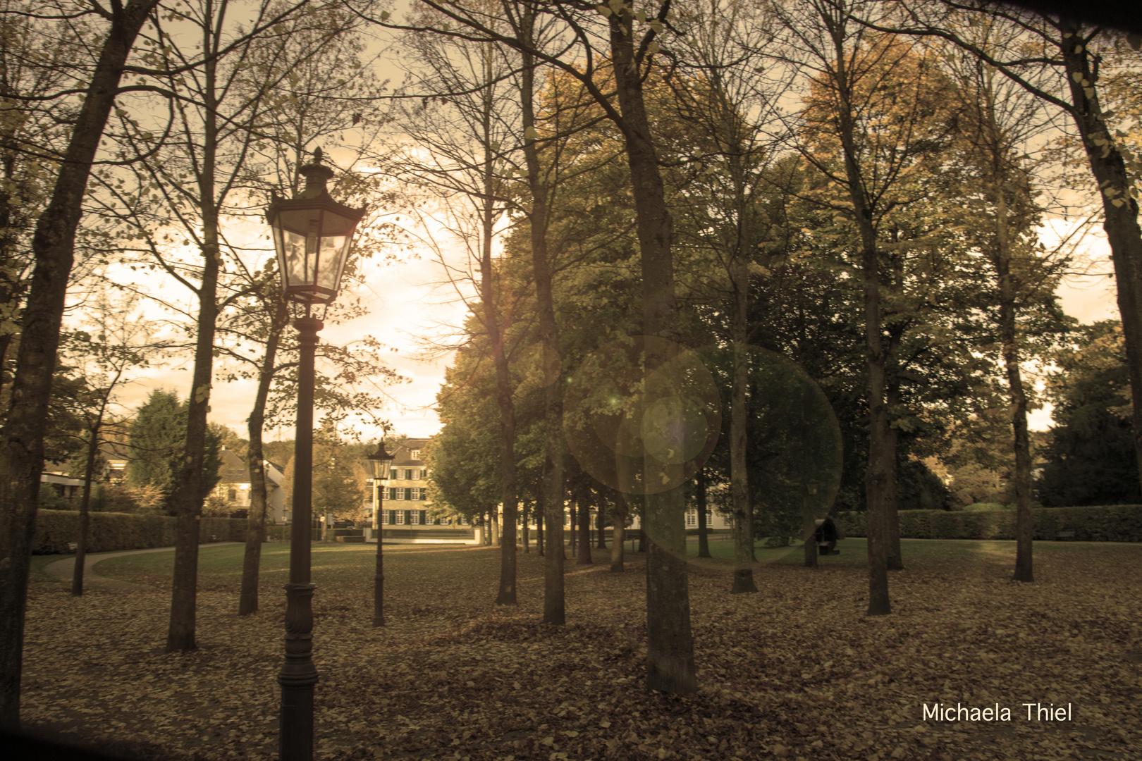 goldener Oktober im Park