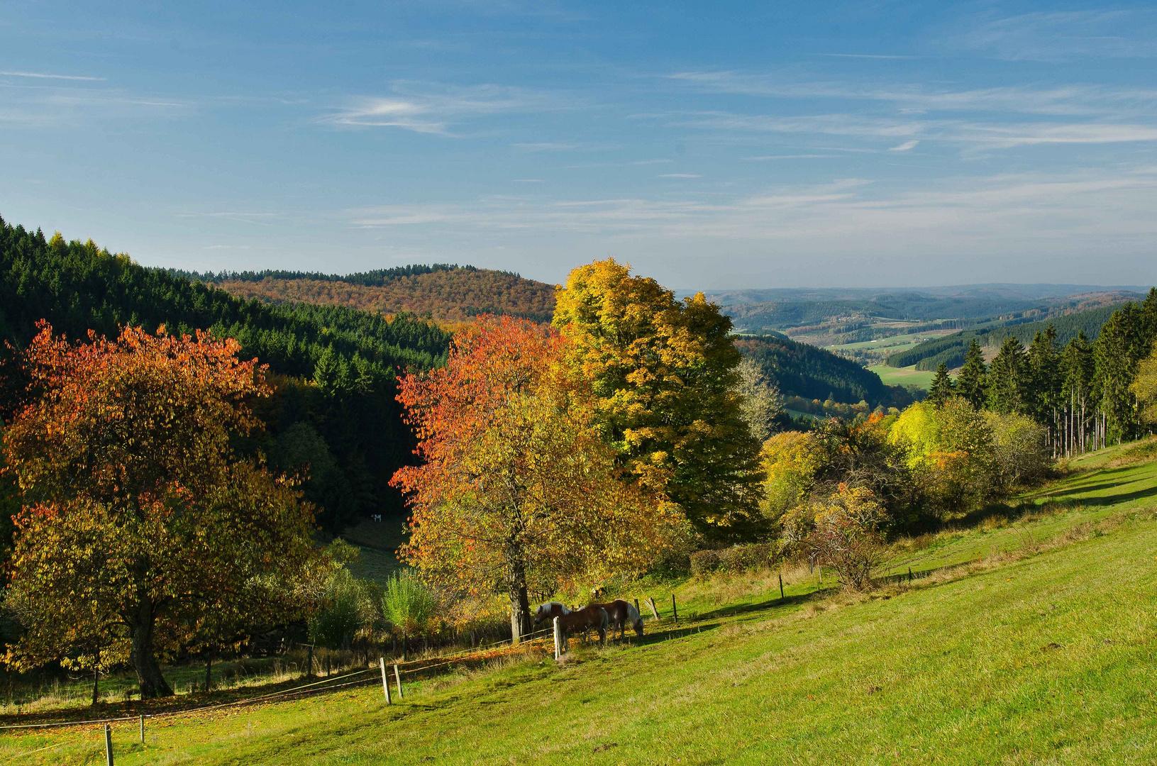 Goldener Oktober im Wittgensteiner Land