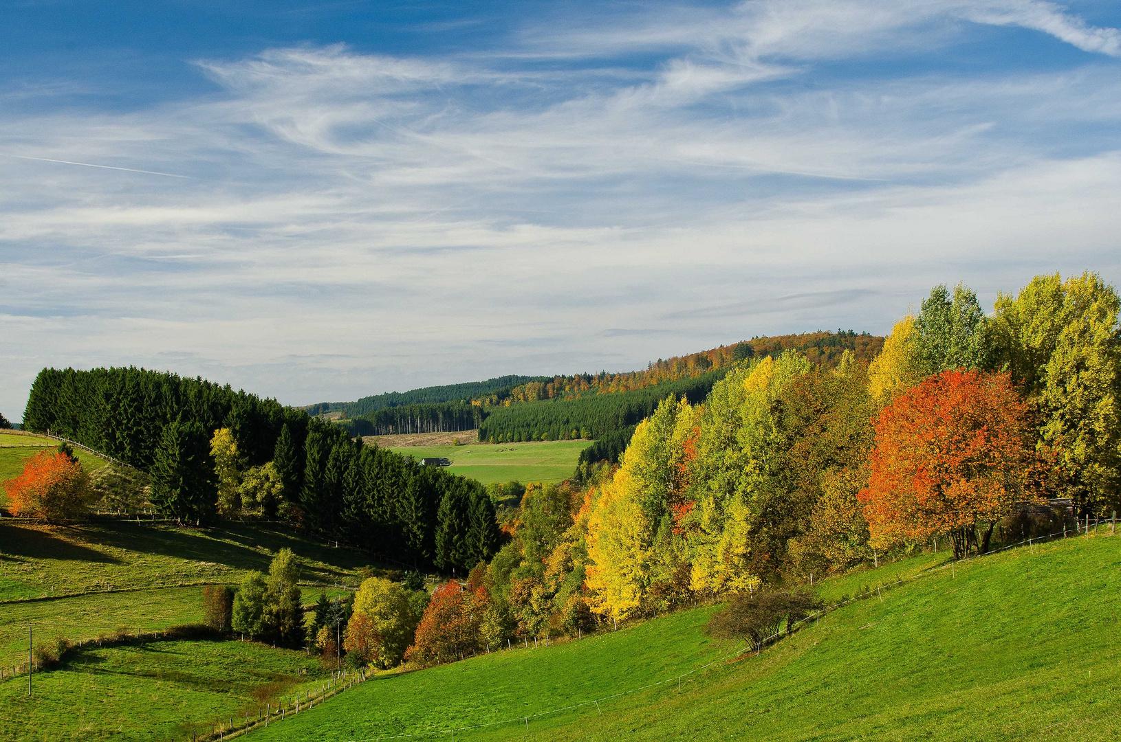 Goldener Oktober im Wittgensteiner Land III