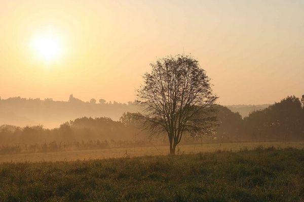 Goldener Oktobermorgen