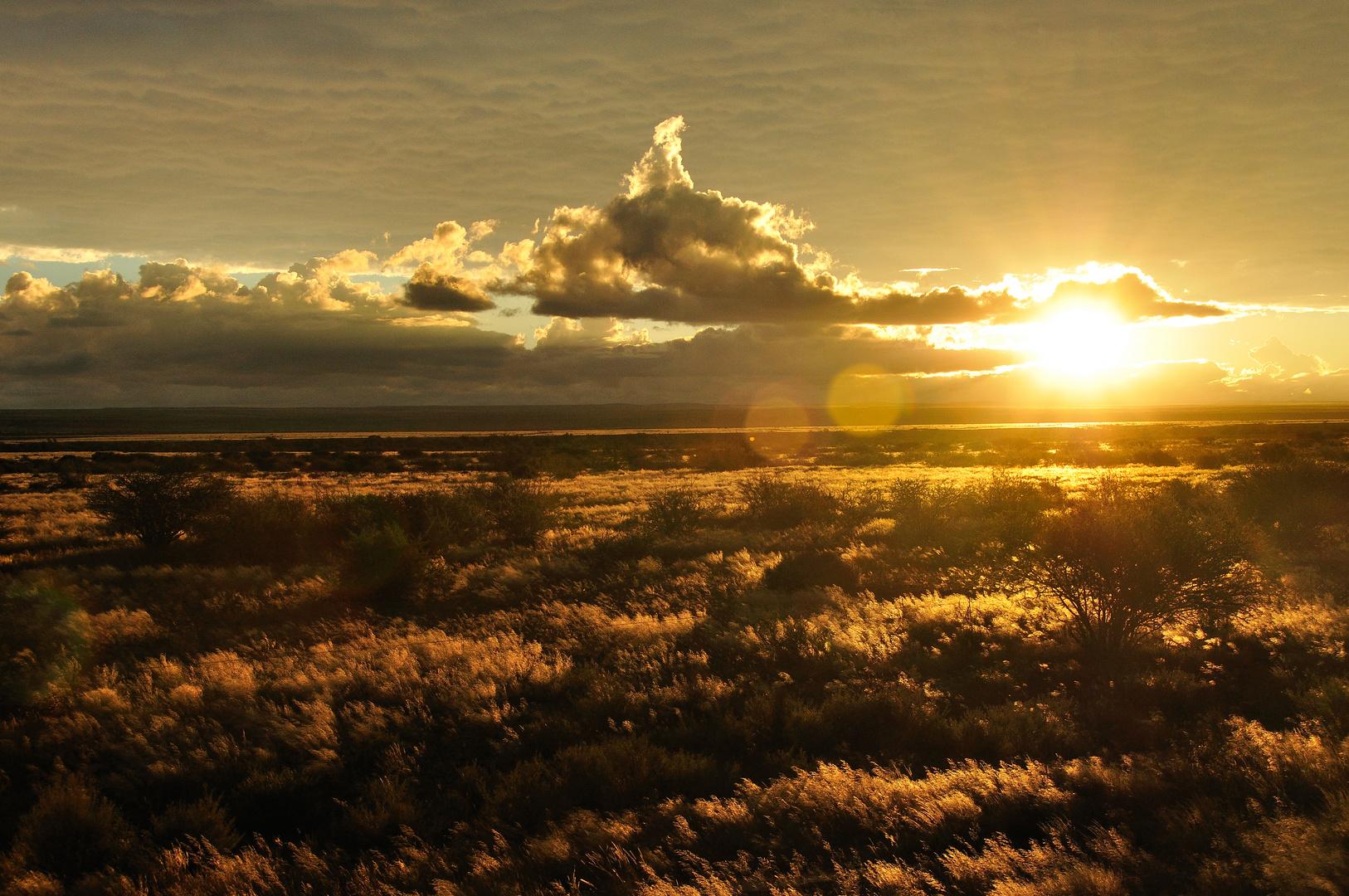 Goldener Sonnenuntergang in Afrika