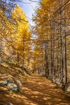 Goldener Weg