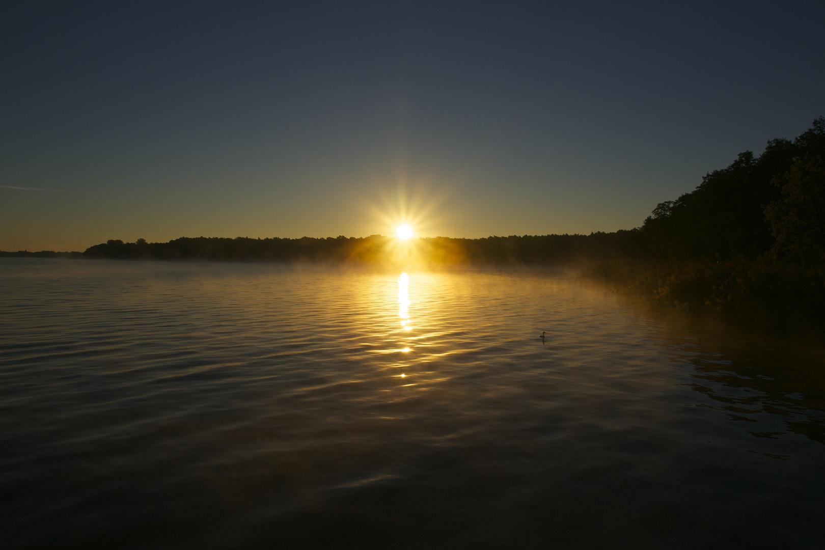 Goldenes Erwachen