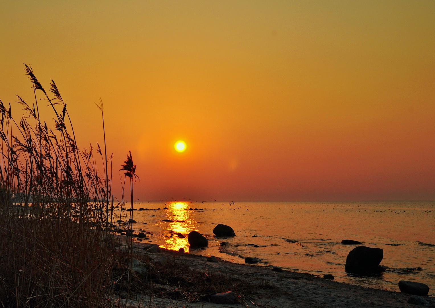 Goldenes Licht der Abendsonne