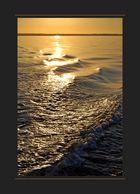goldenes Meer