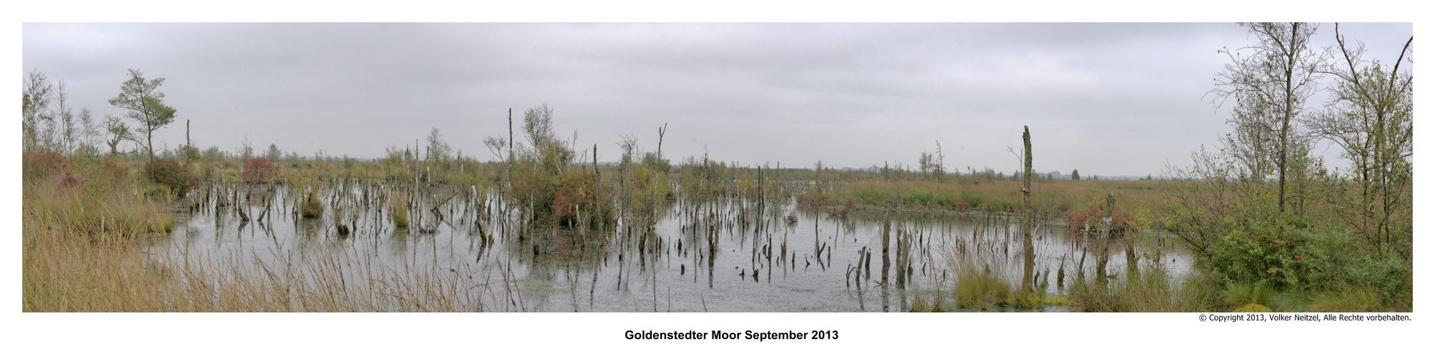 Goldenstedter Moorpanorama