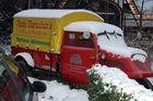 Goliath im Schnee