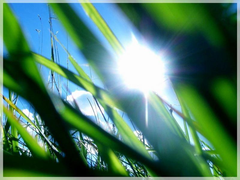 good morning sunshine :)